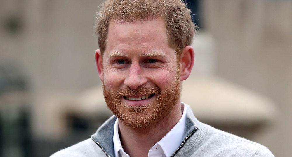 网飞将推出一部哈里王子制作的纪录片