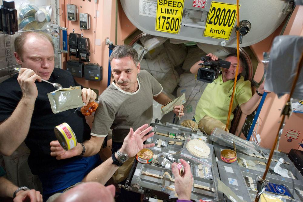 国际空间站第23次组员。