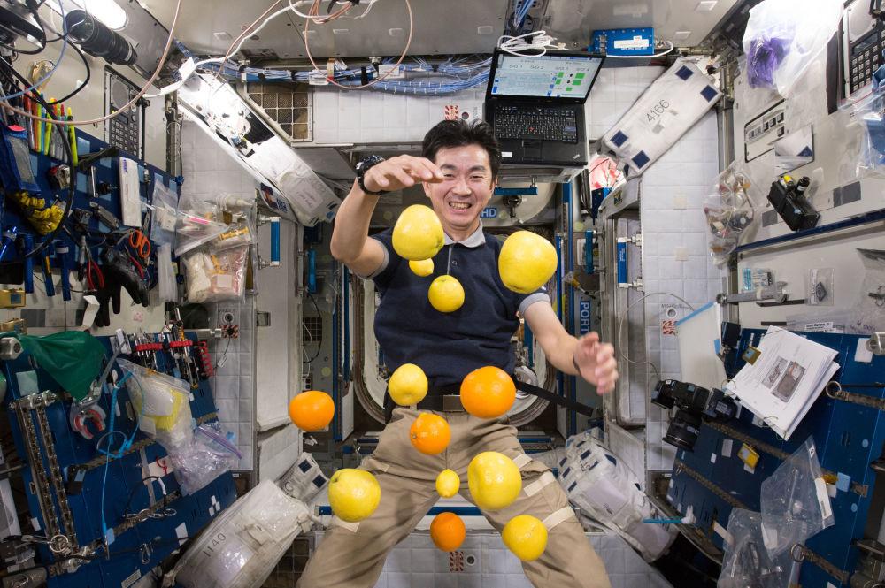 日本航天员油井龟美也在国际空间站内收集悬浮的水果。
