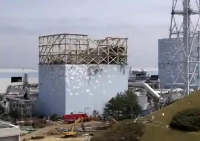 """专家和环保激进分子对日本当局决定将福岛一号核电站的废水倒入海洋的行为发表评论说:""""没人会为此负责"""""""