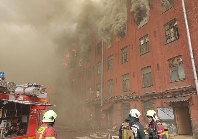 圣彼得堡一家工厂起火 一名消防员在灭火时殉职