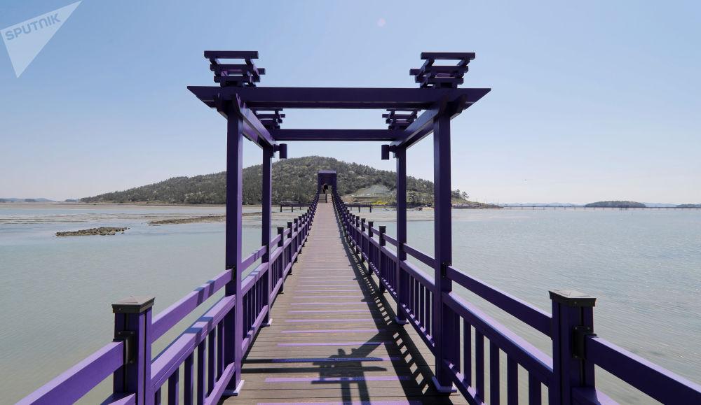 韩国全罗南道的紫色廊桥。