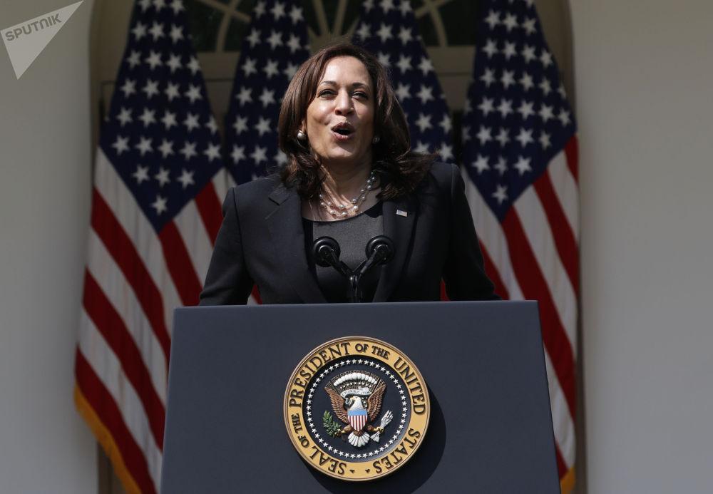 美国副总统哈里斯在总统新闻发布会上讲话。