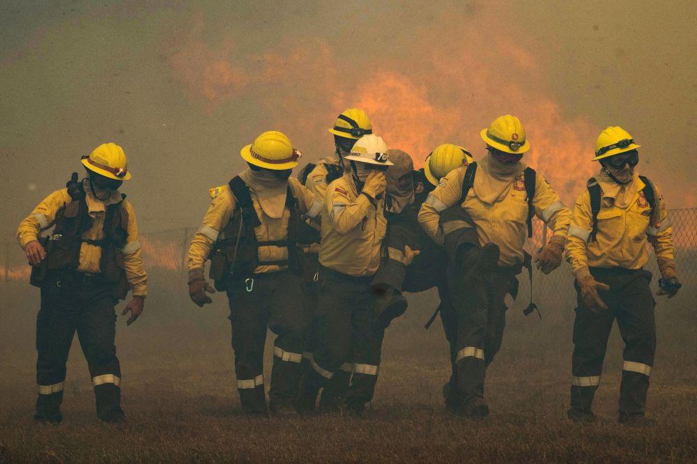 开普敦发生森林大火