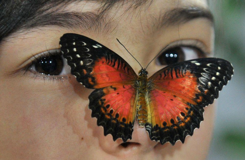 比什凯克女孩脸上的一只蝴蝶。