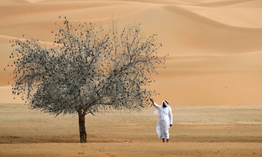 阿联酋沙特边境沙漠。
