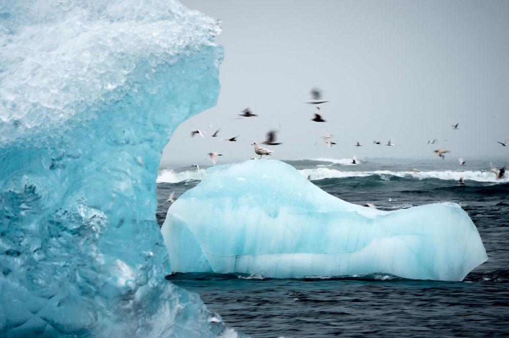 冰岛杰古沙龙泻湖。
