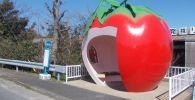 日本长崎县小长井町市的苹果形状的公交车站。