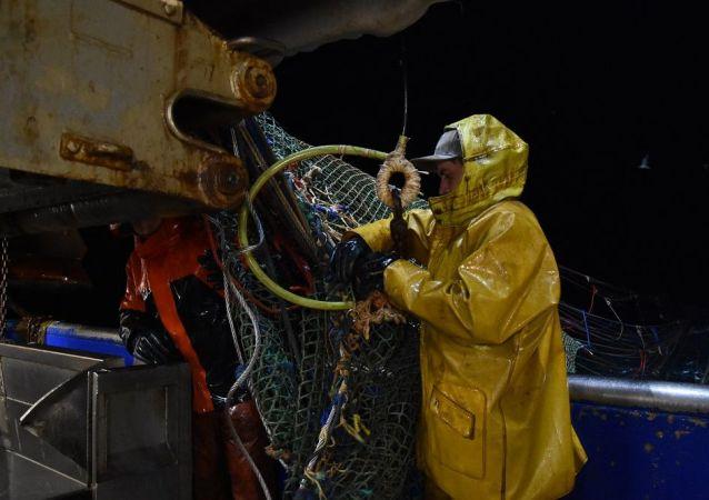法国,渔业,英吉利海峡