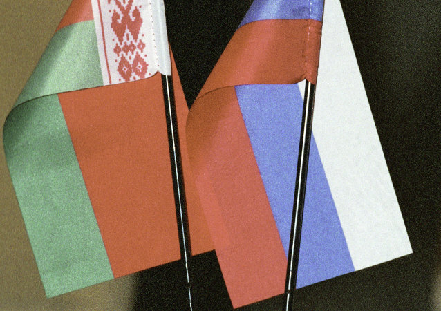 俄总理与白俄总统索契会晤讨论联合行动克服经济危机问题