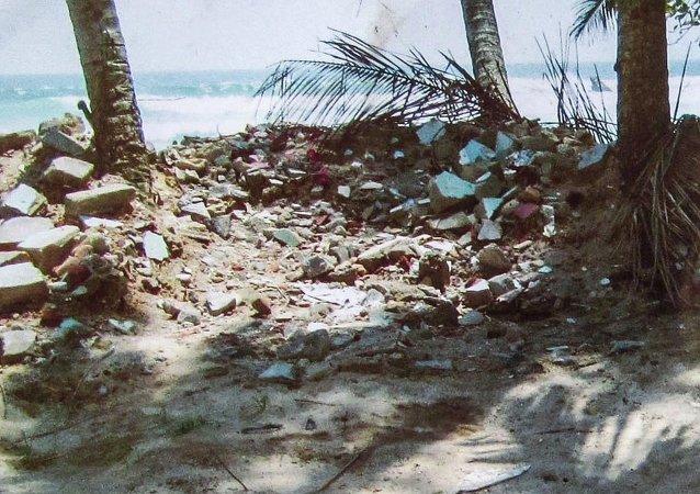 东南亚海啸10周年:追悼•反思与问题