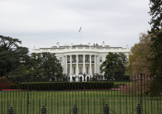 白宫:美国对俄罗斯和中国在联合国安理会就叙利亚问题使用否决权表示不满