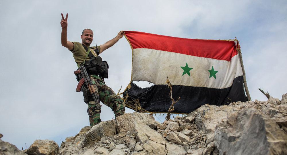 俄国防部:叙军自年初起从伊斯兰国恐怖分子手中解放49座居民点