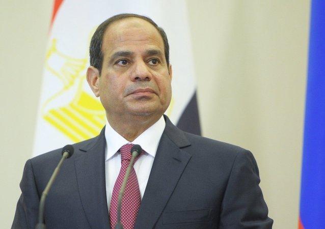 埃及总统阿卜杜勒-法塔赫•塞西