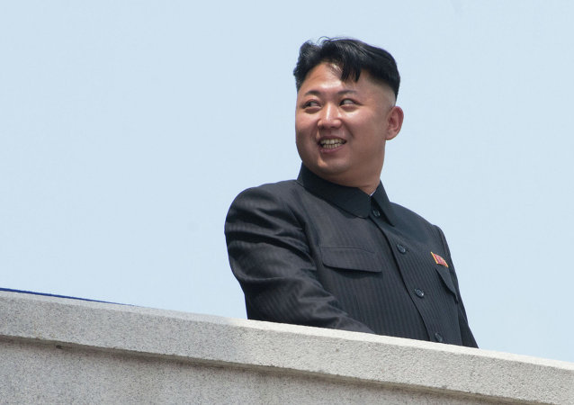 俄罗斯驻朝鲜大使馆未确认金正恩访俄