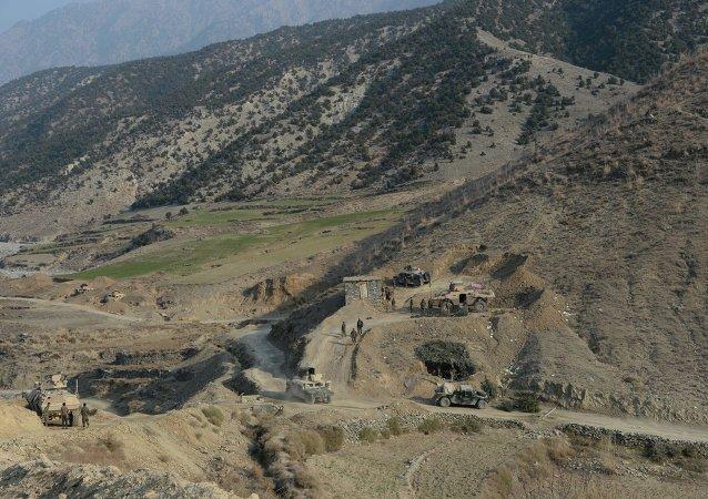 伊斯兰国在阿富汗境内活动愈加频繁 拟向独联体国家扩张