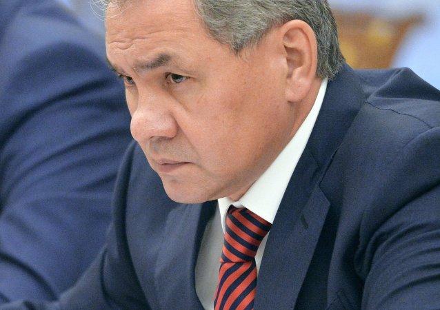 俄防长:俄或在半年内起诉法国不支付航母