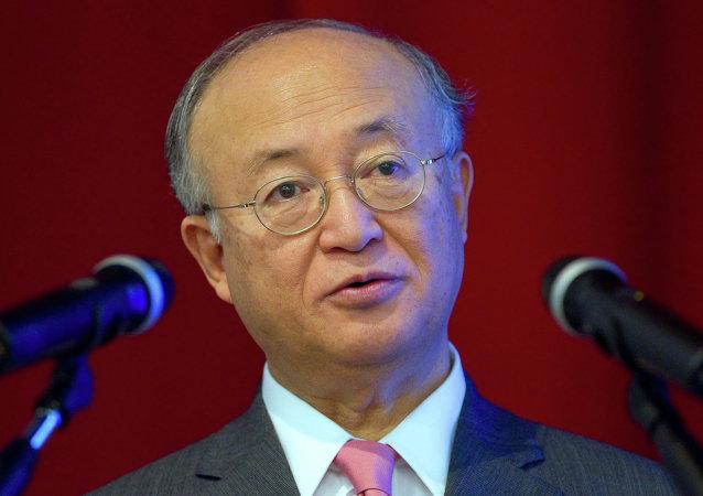 国际原子能机构总干事:中国要走向国际原子能市场仍需时间