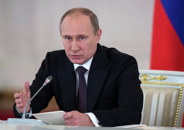 普京:俄反危机计划必须确保社会稳定和经济发展