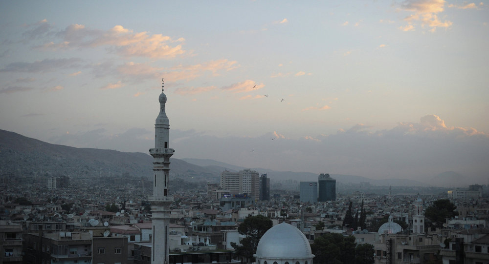叙利亚代表团团长欢迎叙利亚问题莫斯科磋商成果