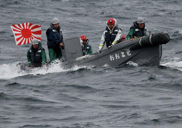 日本海边发现一具尸体,初步断定为朝鲜公民