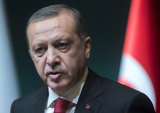 埃尔多安称土耳其有权在境外打击IS和库尔德武装