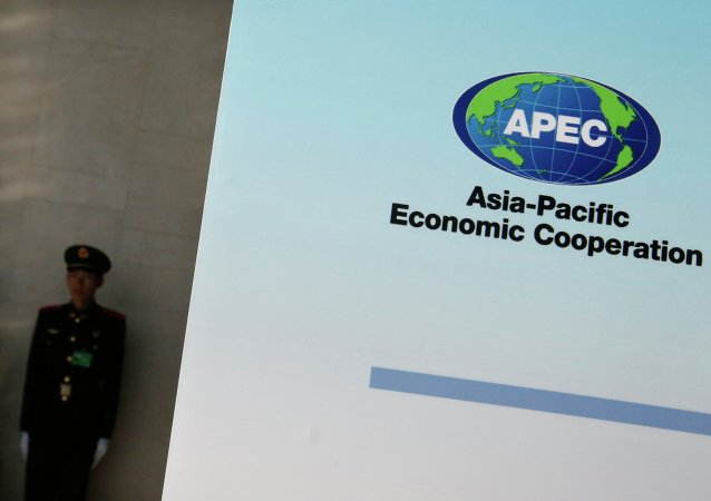A paramilitary policeman stands guard next to a banner bearing a logo of APEC during the opening of the 2014 APEC Concluding Senior Officials' Meeting, at the China National Convention Centre, in Beijing, November 5, 2014.