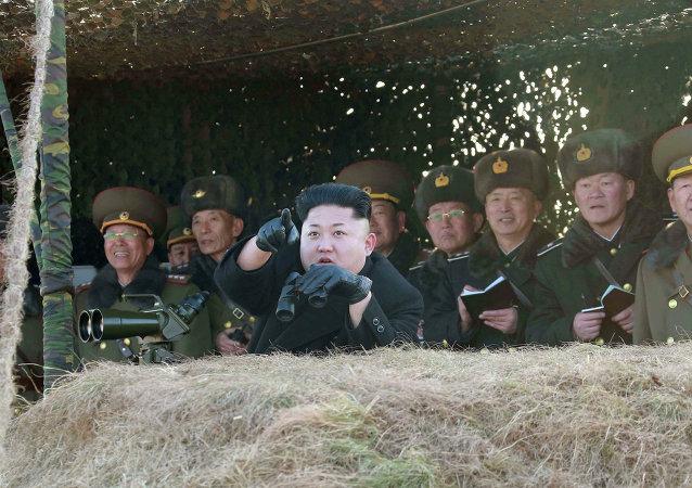 朝中社:朝鲜已通过研发无人机和智能武器的决议
