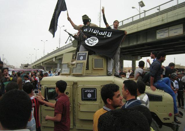 拉夫罗夫:委托约旦协调制定统一的恐怖主义组织名单
