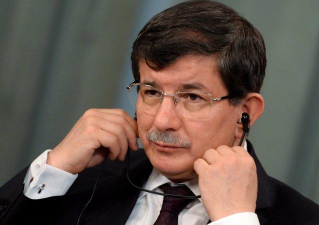 媒体:土耳其总理将A321空难称为反人类罪行
