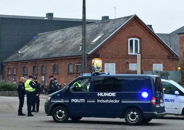 瑞典亵渎先知漫画家在丹麦首都遭暗杀