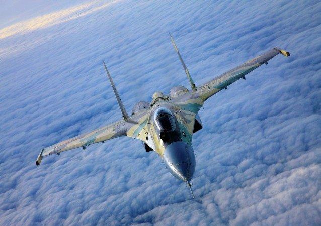俄副总理谈在叙苏-35:不建议与之一较高下