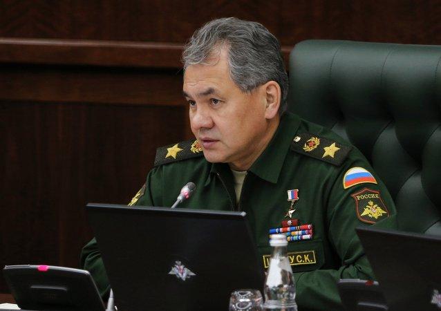 俄国防部:绍伊古与三国高官讨论阿勒颇问题