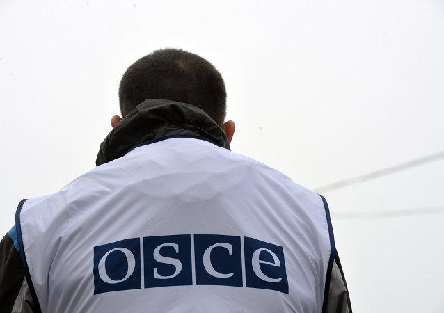 欧安组织民主制度与人权办公室望在俄总统选举期间与俄中选委有效合作