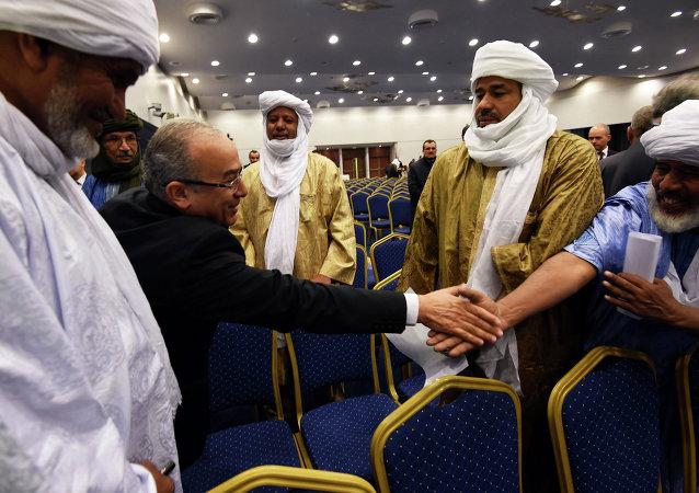 马里政府和叛军签署了和平协议