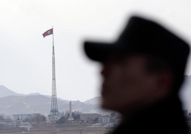 俄专家:金正恩不愿步卡扎菲和萨达姆的后尘