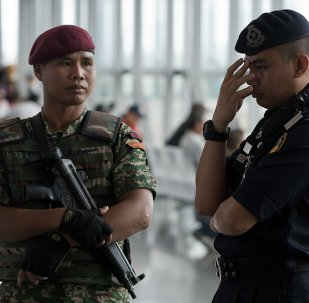 媒體:被宣佈為「不受歡迎的」朝鮮大使已經離開馬來西亞