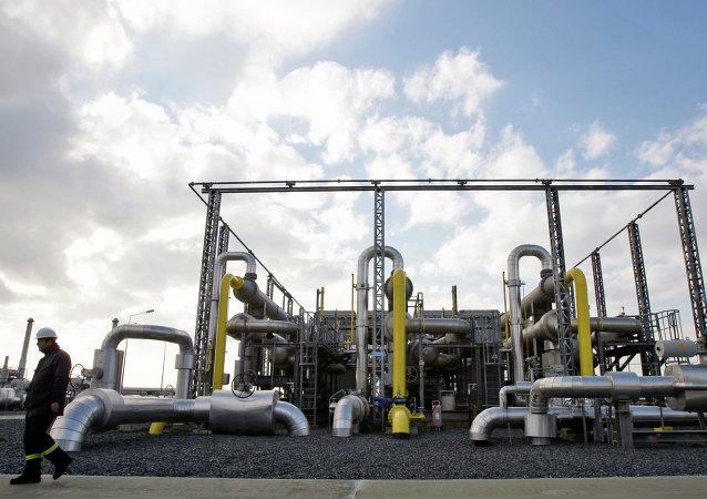 """普京与土耳其总统讨论""""土耳其流""""能源项目"""