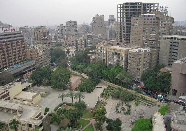 俄叙利亚问题特使与埃及总统讨论对抗地区挑战问题