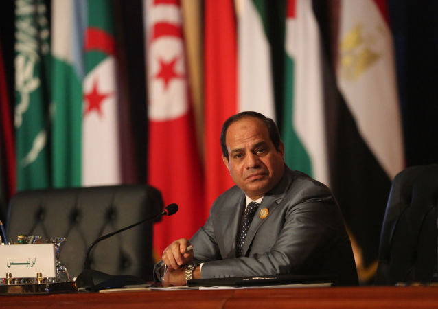埃及总统:应无选择性地进行反恐
