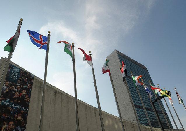 消息人士:朝鲜宣布氢弹试验后联合国安理会将举行会议