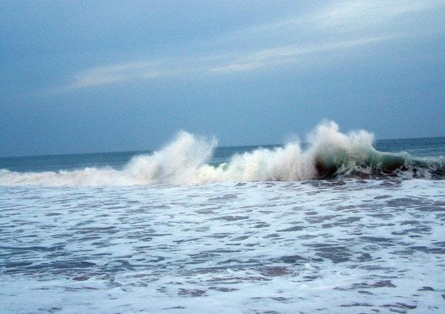 日本媒体:日本东部海啸引发的海浪高度达到1.4米