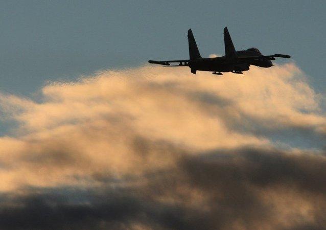 媒体:俄歼击机再次接近黑海上美侦察机