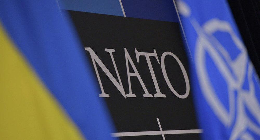 民调:43%的乌克兰人赞成国家加入北约