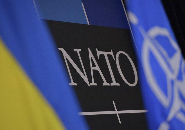 乌克兰总统:该国暂时不具备加入北约的条件