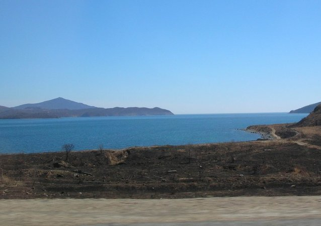 圣三一海湾(滨海边疆区)