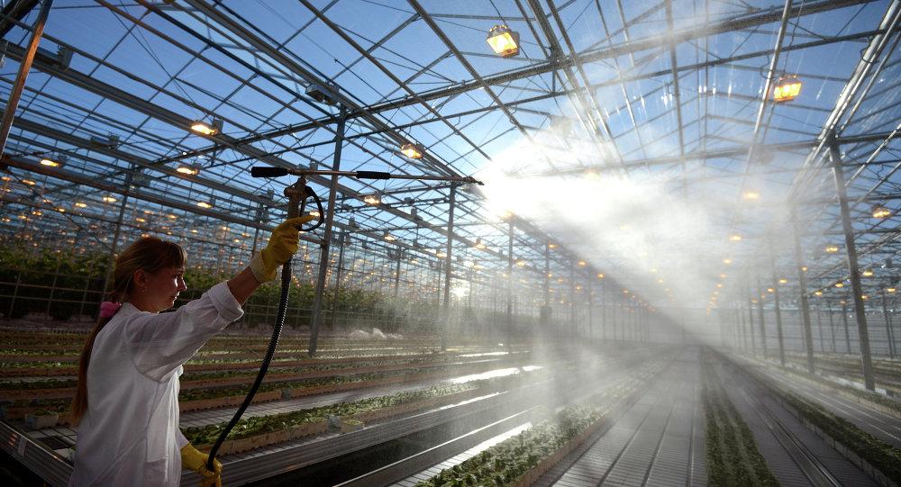 俄直接投资基金会总裁:该基金或将在5月与中国签订工农业领域协议