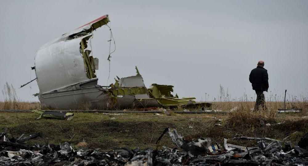 俄罗斯联邦航空运输署:俄提出要考虑顿巴斯地区空难的所有版本