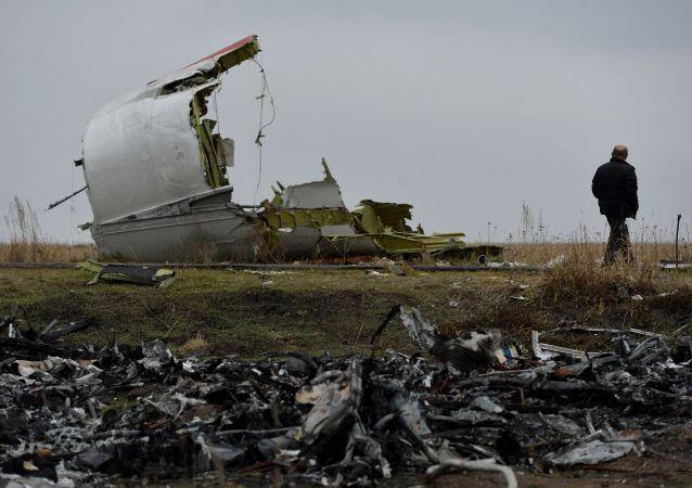 国际专家抵达顿巴斯地区波音客机失事地点