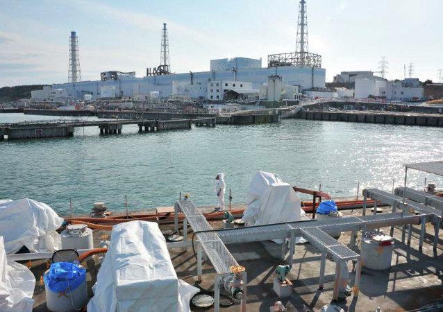 """日本""""福岛-1""""号核电站"""